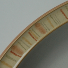 Denby Caramel Stripes