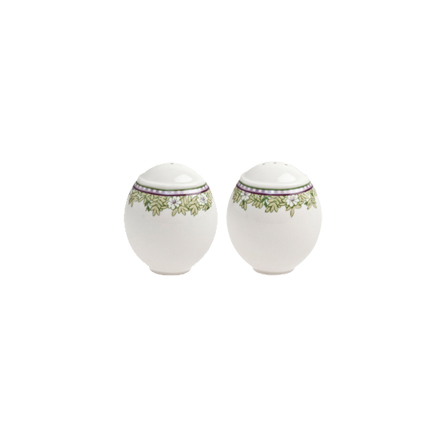 Denby Monsoon Daisy Green  Salt and Pepper in Gift Box