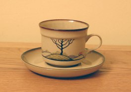 Denby Savoy  Tea Cup and Saucer