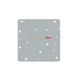 Sophie Allport Starry Night  Coasters - Set of 4