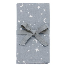 Walton Twilight  Napkins - Set of 4